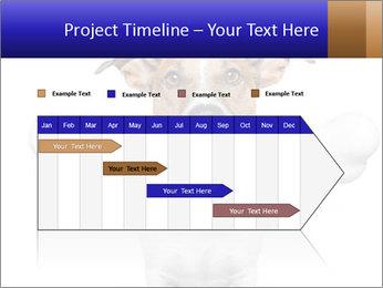 0000072325 PowerPoint Template - Slide 25