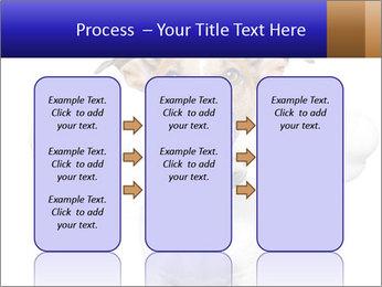 0000072325 PowerPoint Template - Slide 86