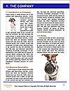 0000072325 Word Template - Page 3
