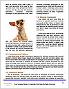 0000072325 Word Template - Page 4