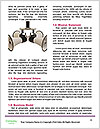 0000072327 Word Template - Page 4