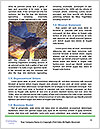 0000072329 Word Template - Page 4