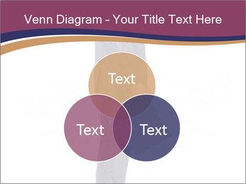 0000072330 PowerPoint Templates - Slide 33