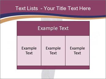 0000072330 PowerPoint Templates - Slide 59