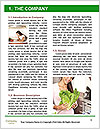 0000072333 Word Template - Page 3