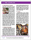 0000072335 Word Template - Page 3