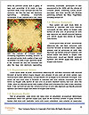 0000072344 Word Template - Page 4