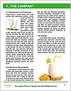0000072346 Word Templates - Page 3