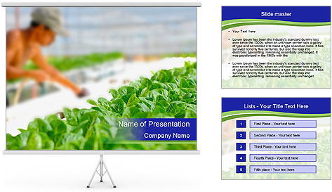 0000072347 PowerPoint Template