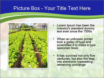 0000072347 PowerPoint Template - Slide 13