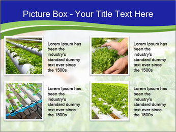 0000072347 PowerPoint Template - Slide 14