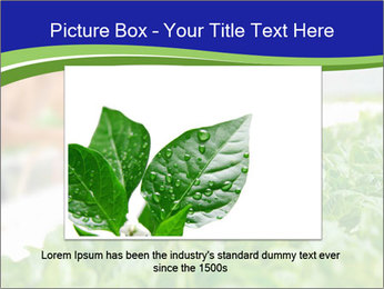 0000072347 PowerPoint Template - Slide 15