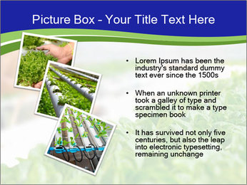 0000072347 PowerPoint Template - Slide 17