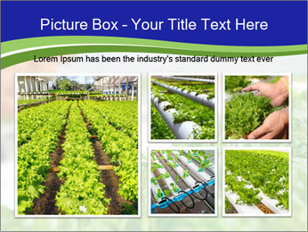 0000072347 PowerPoint Template - Slide 19