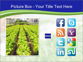 0000072347 PowerPoint Template - Slide 21