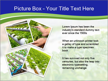 0000072347 PowerPoint Template - Slide 23