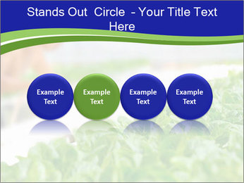 0000072347 PowerPoint Template - Slide 76