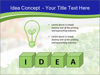 0000072347 PowerPoint Template - Slide 80
