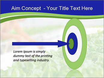 0000072347 PowerPoint Template - Slide 83
