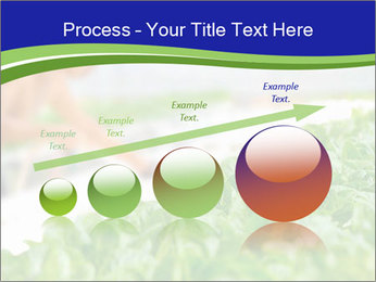 0000072347 PowerPoint Template - Slide 87