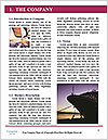 0000072353 Word Template - Page 3
