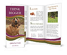 0000072358 Brochure Templates