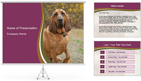 0000072358 PowerPoint Template