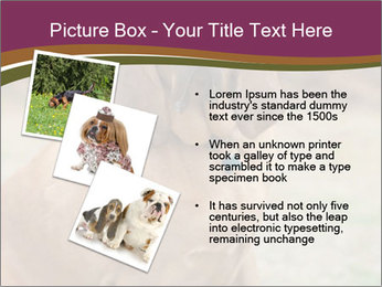 0000072358 PowerPoint Template - Slide 17
