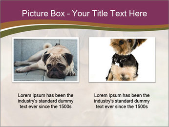 0000072358 PowerPoint Template - Slide 18