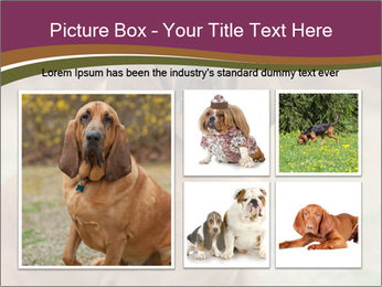 0000072358 PowerPoint Template - Slide 19
