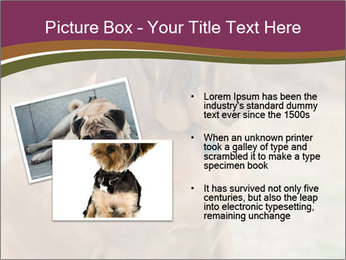 0000072358 PowerPoint Template - Slide 20