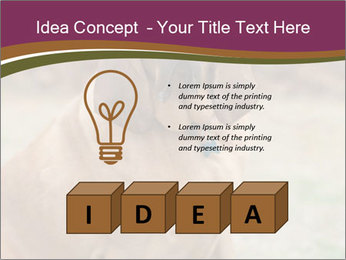 0000072358 PowerPoint Template - Slide 80