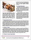 0000072362 Word Templates - Page 4