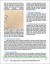0000072368 Word Template - Page 4