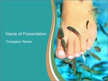 0000072369 PowerPoint Template - Slide 1