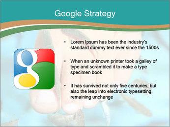 0000072369 PowerPoint Template - Slide 10