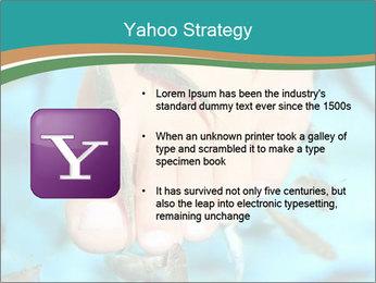 0000072369 PowerPoint Template - Slide 11