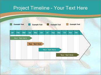 0000072369 PowerPoint Template - Slide 25