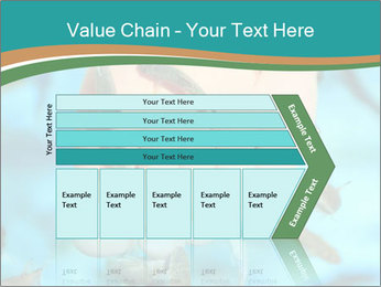 0000072369 PowerPoint Template - Slide 27