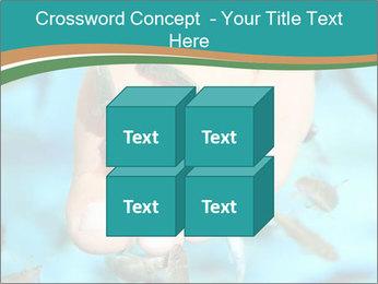 0000072369 PowerPoint Template - Slide 39