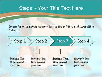 0000072369 PowerPoint Template - Slide 4