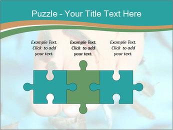 0000072369 PowerPoint Template - Slide 42