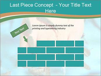 0000072369 PowerPoint Template - Slide 46