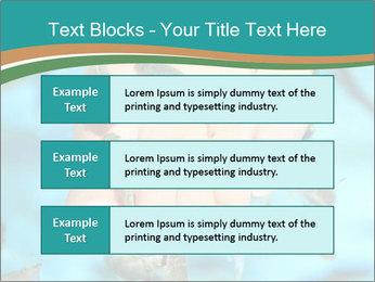 0000072369 PowerPoint Template - Slide 58