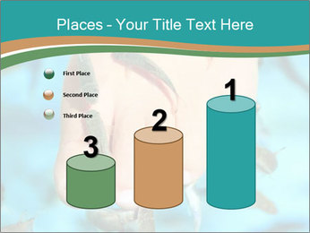 0000072369 PowerPoint Template - Slide 65