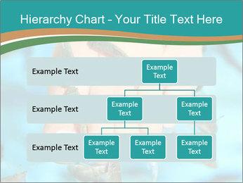 0000072369 PowerPoint Template - Slide 67