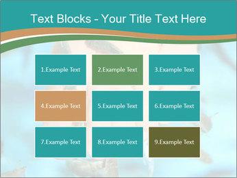 0000072369 PowerPoint Template - Slide 68