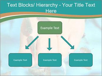 0000072369 PowerPoint Template - Slide 69