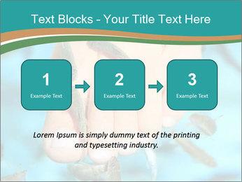 0000072369 PowerPoint Template - Slide 71