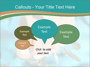 0000072369 PowerPoint Template - Slide 73